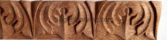 Acanthus cyma