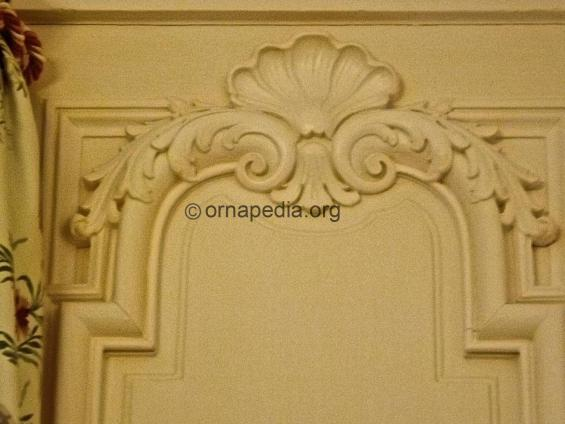 Acanthus and shell